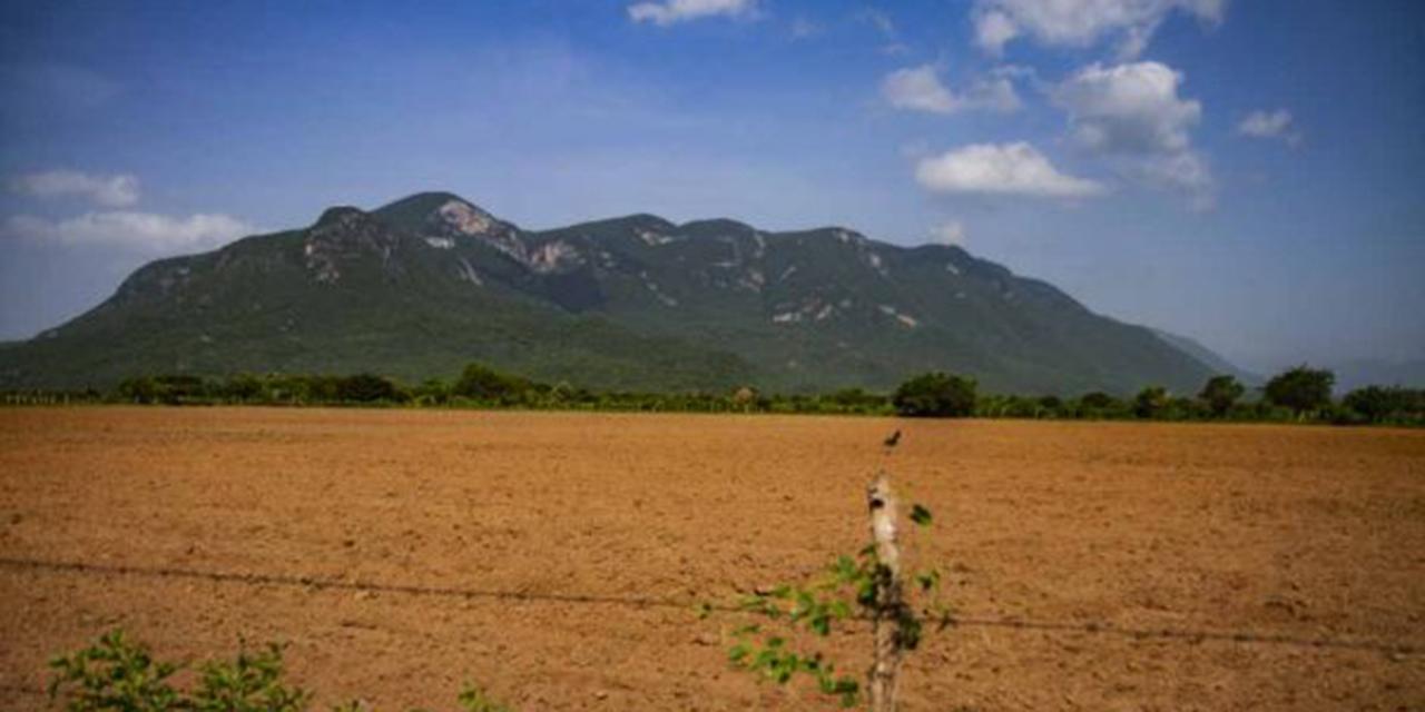 Comunidades de Oaxaca enfrentan parcelación de sus áreas comunes   El Imparcial de Oaxaca