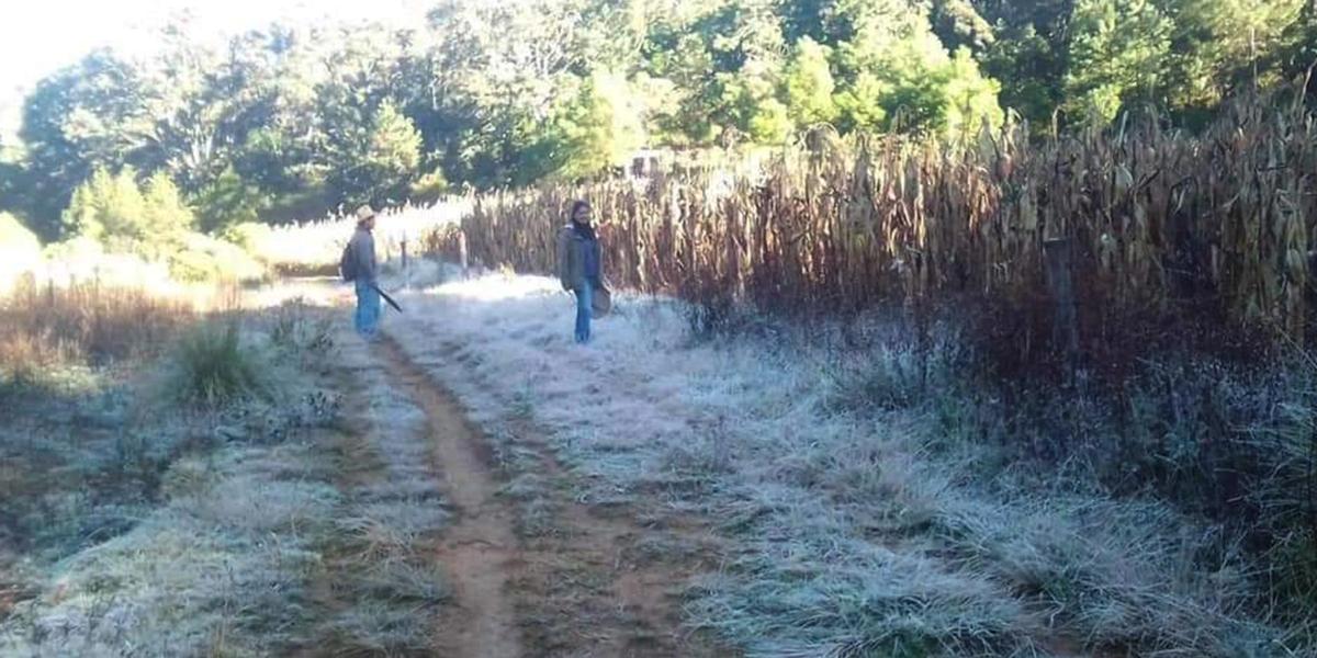 Frente frío número 13 genera caída de agua nieve en la Mixteca