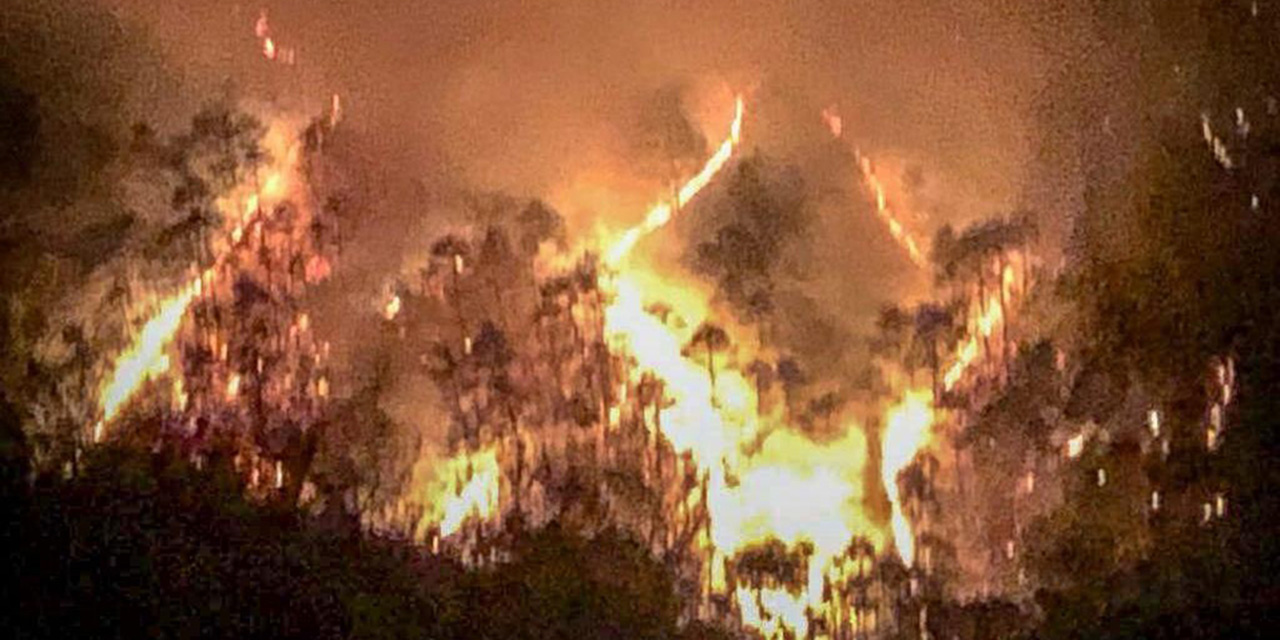 Fuego siniestra más de 18 mil hectáreas en Oaxaca | El Imparcial de Oaxaca