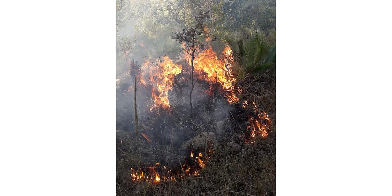 Incendio arrasa con pastizales en La Mixteca | El Imparcial de Oaxaca