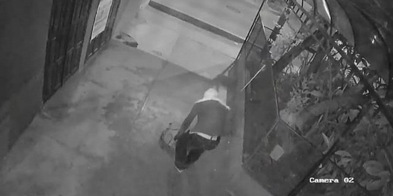 Captan a robalámparas en plena faena en Oaxaca