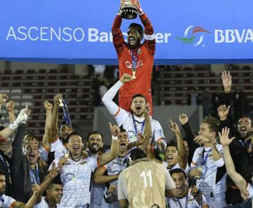 Se cumplen 3 años del primer campeonato de Alebrijes de Oaxaca