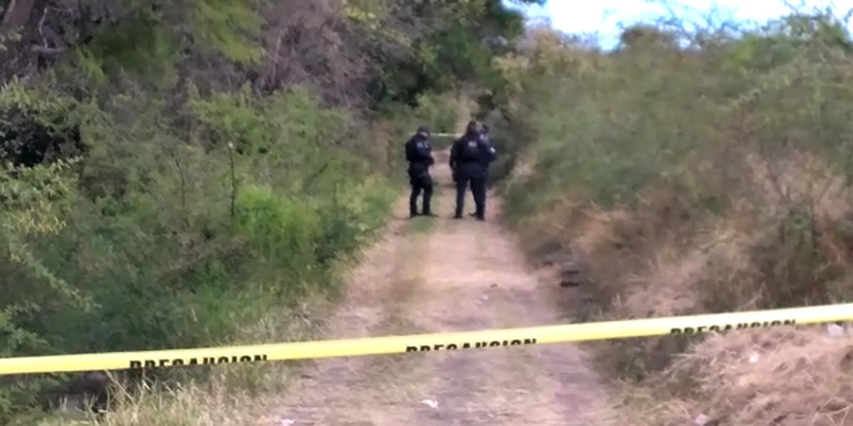 Localizan cuerpo de presunto ejecutado en Nativitas, Etla | El Imparcial de Oaxaca