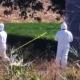 Reportan persona ejecutada en San Antonio de la Cal