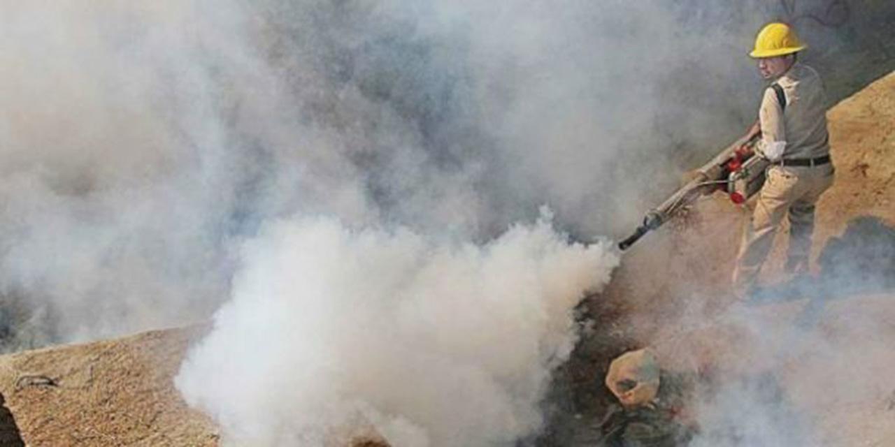 Hay cuatro nuevos casos de dengue en Oaxaca | El Imparcial de Oaxaca