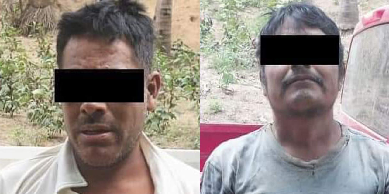Acusan a campesinos por el homicidio de activista en Loxicha | El Imparcial de Oaxaca