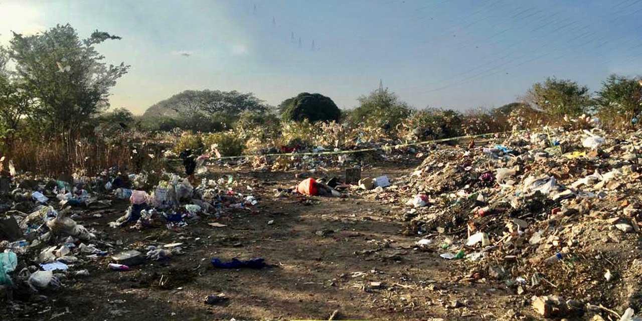 Abandonan cuerpo sin vida en un basurero | El Imparcial de Oaxaca