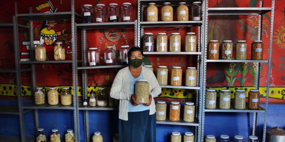 Crean otro banco de semillas en Oaxaca | El Imparcial de Oaxaca