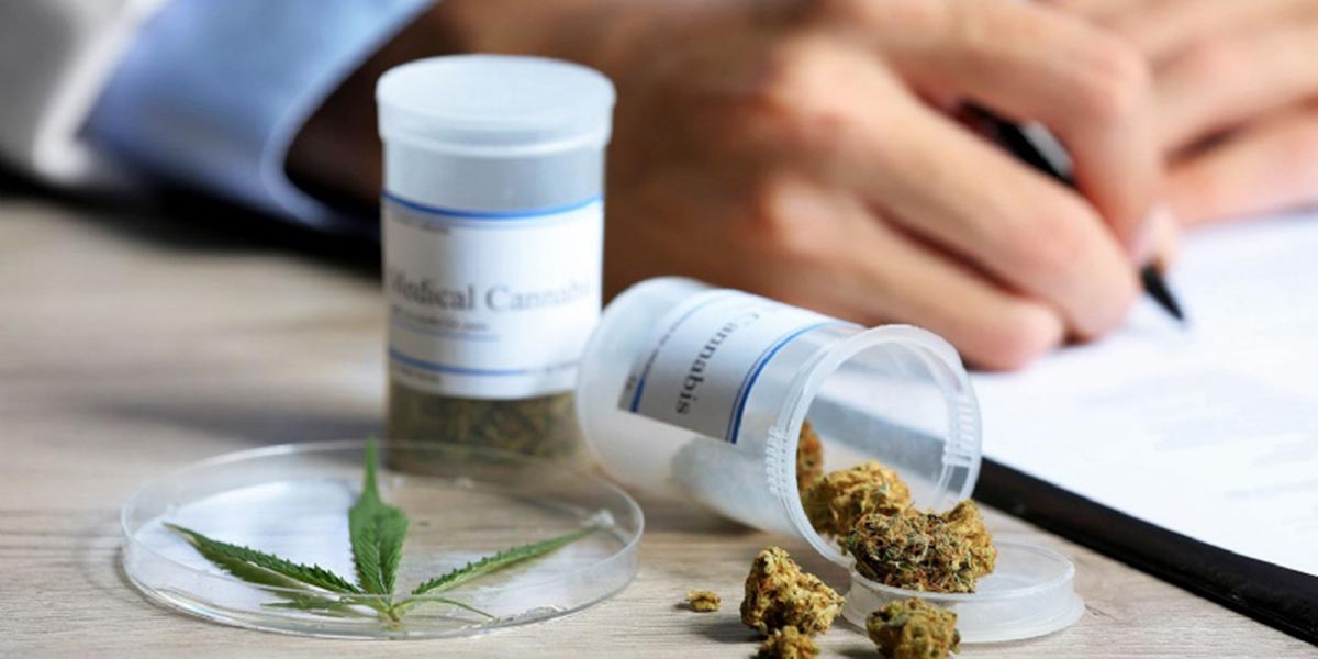 Listo reglamento que regula uso de cannabis medicinal   El Imparcial de Oaxaca