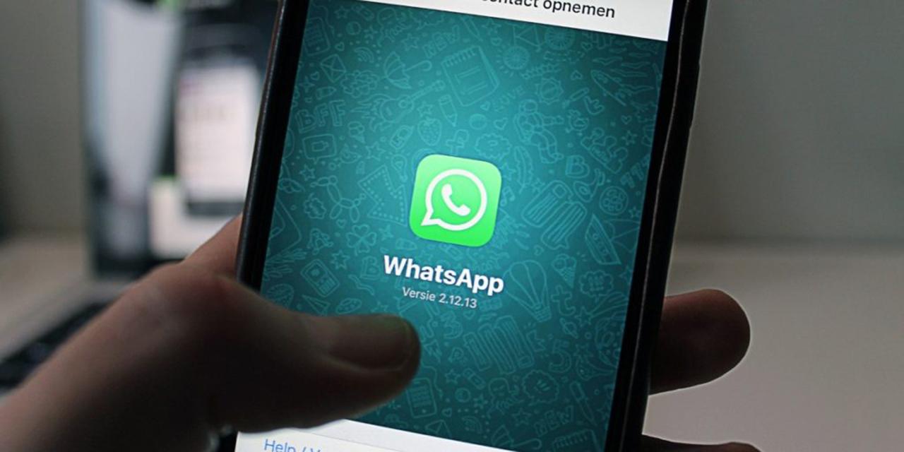 INAI explica los nuevos términos de WhatsApp | El Imparcial de Oaxaca