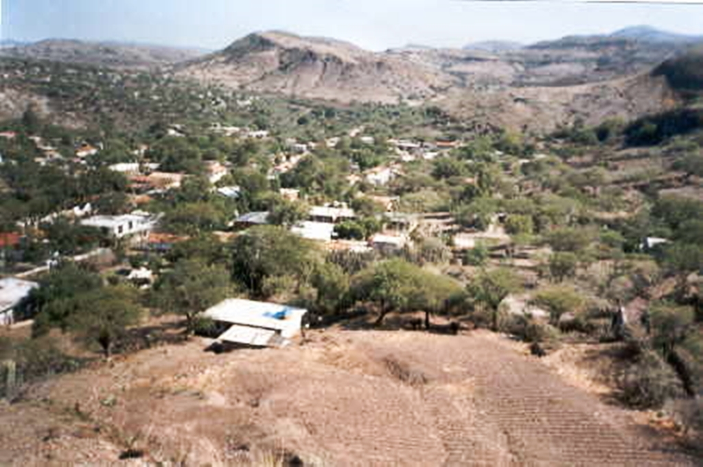Niega síndico que secretaria haya sido despedida por Covid-19   El Imparcial de Oaxaca