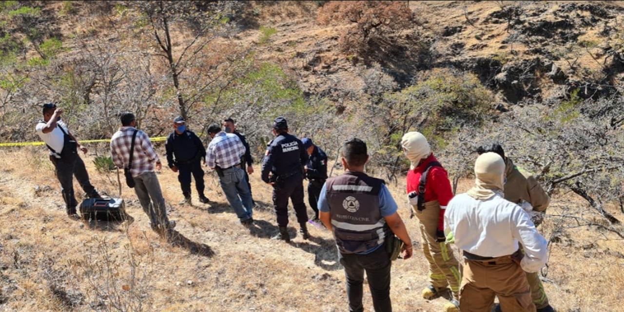 Hombre muere al ser atacado por abejas en Santa María Yuxichi   El Imparcial de Oaxaca