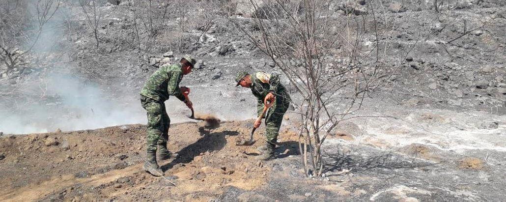 Combate Ejército incendio forestal | El Imparcial de Oaxaca