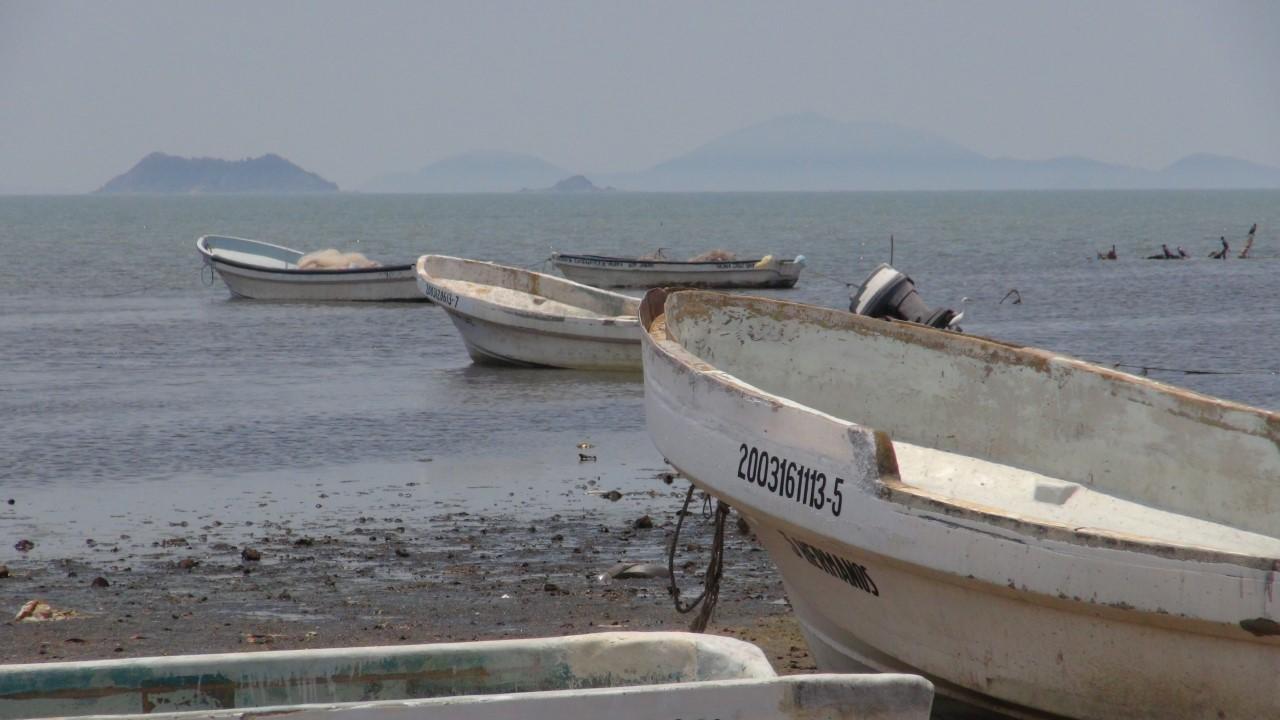 Baja producción pesquera en Oaxaca | El Imparcial de Oaxaca