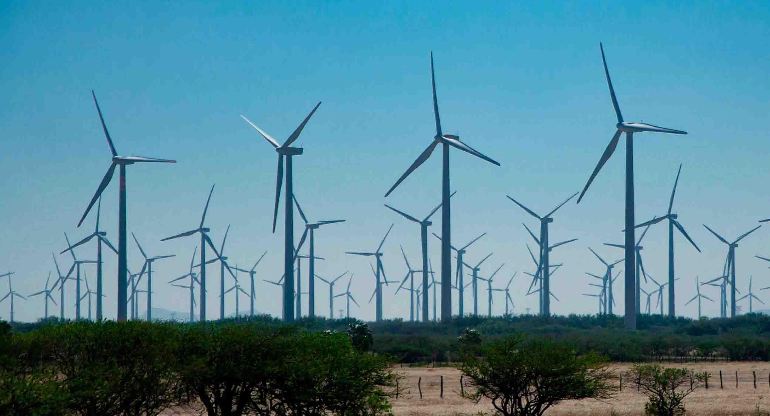 Frenan proyectos eólicos en el Istmo   El Imparcial de Oaxaca