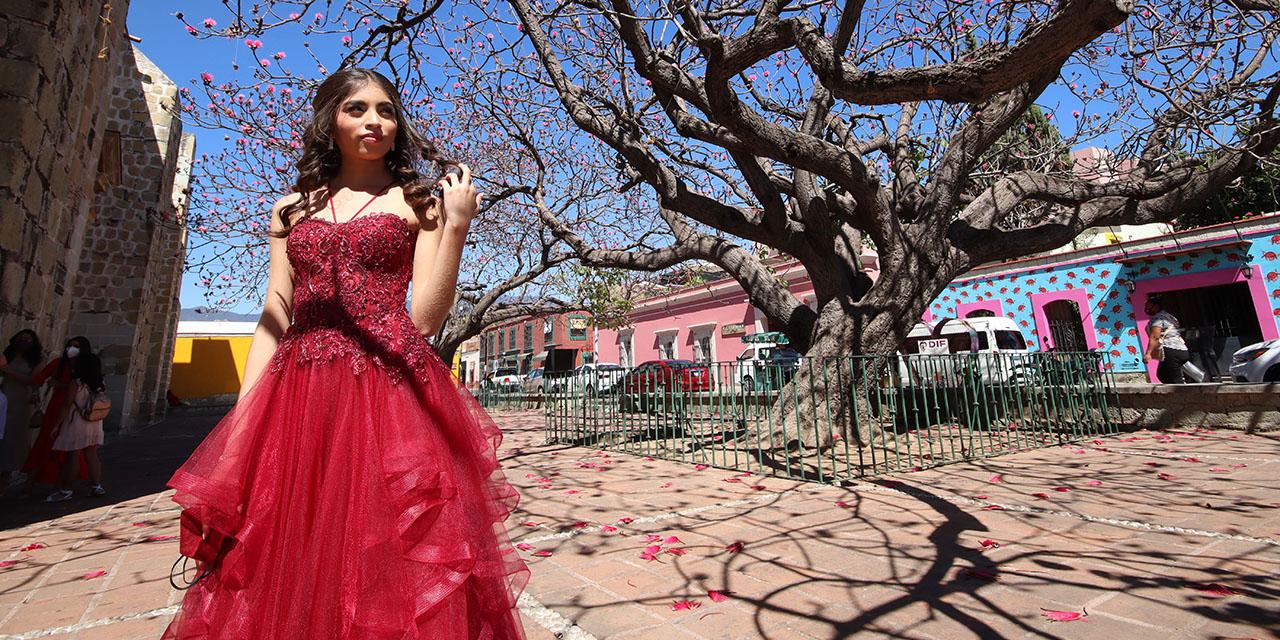 Festeja Romina sus XV años | El Imparcial de Oaxaca