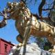 Regresa el color dorado en los Leones de 'El Llano'