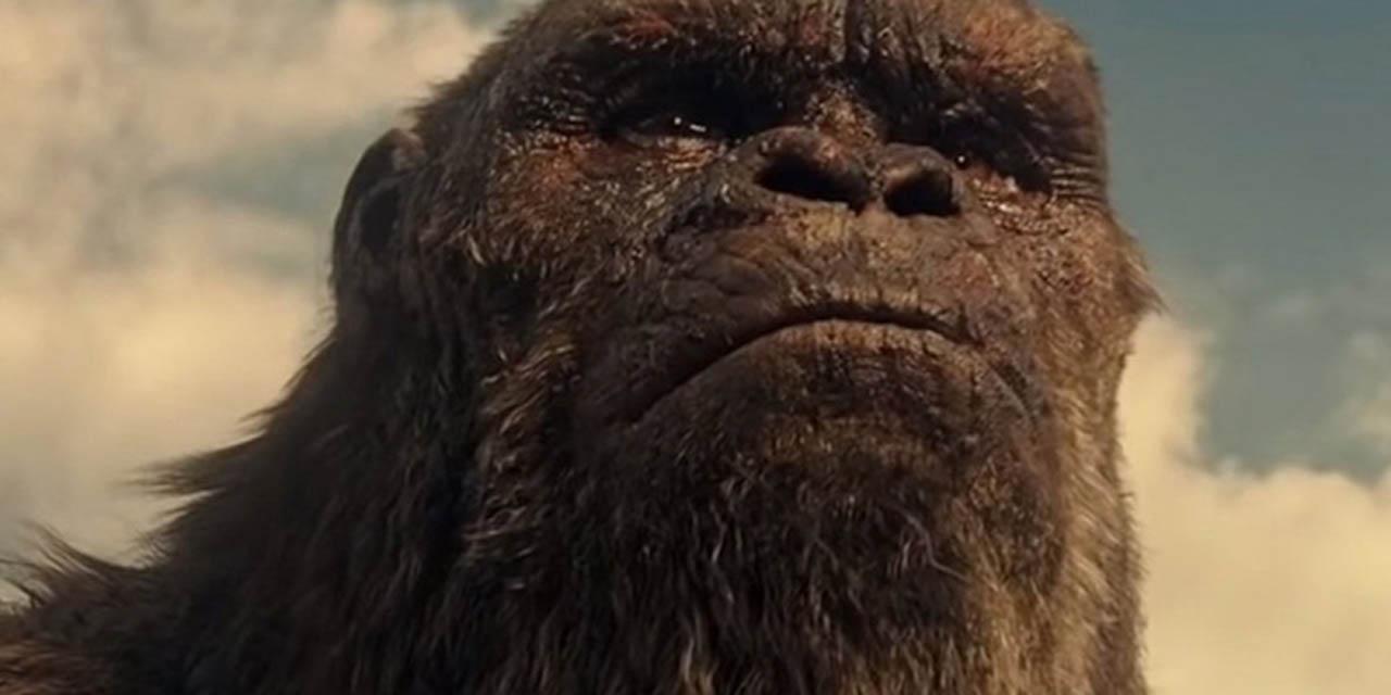 Preparan secuela de Godzilla vs Kong | El Imparcial de Oaxaca