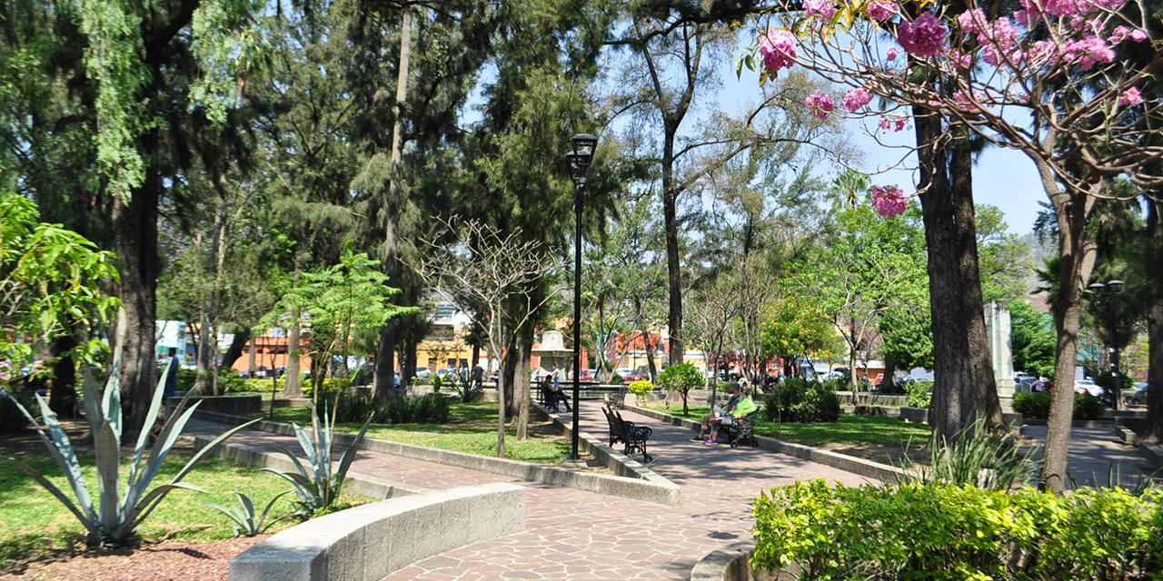 Vecinos de los jardines del Centro rechazan proselitismo   El Imparcial de Oaxaca