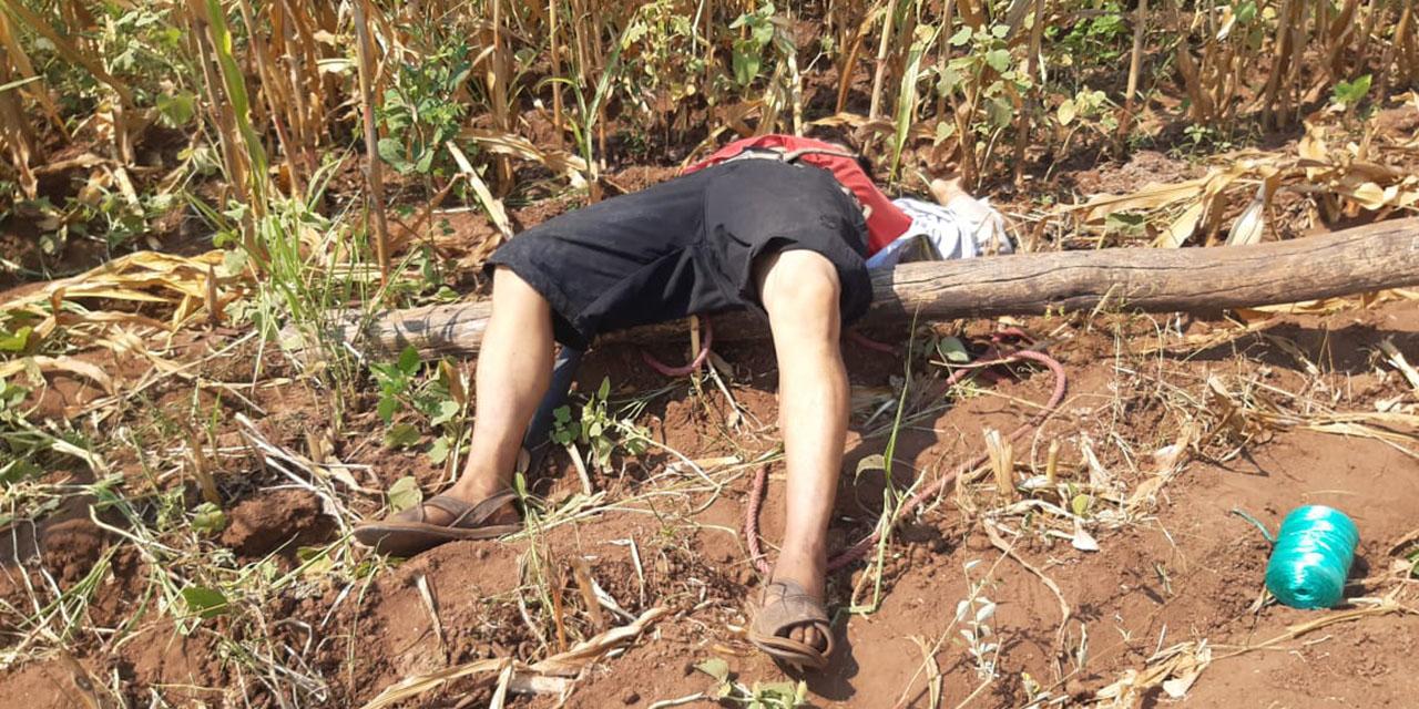 Hombre aparece muerto en terreno de cultivo en Santa María Mixtequilla | El Imparcial de Oaxaca