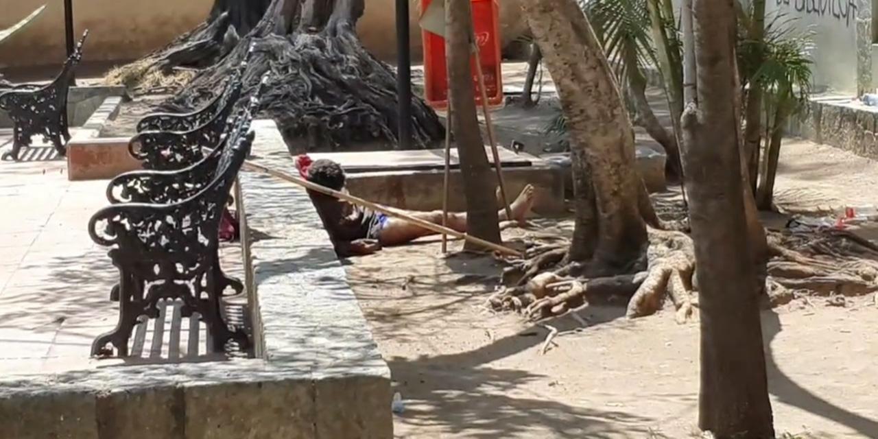 Hombre de 50 años en situación de calle muere en jardinera del Centro de Oaxaca | El Imparcial de Oaxaca
