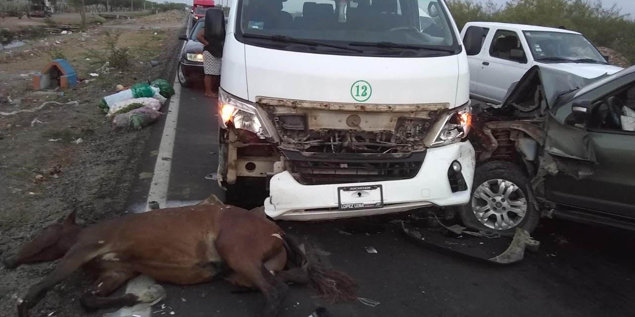 Un caballo ocasiona aparatoso accidente en carretera a Unión Hidalgo | El Imparcial de Oaxaca