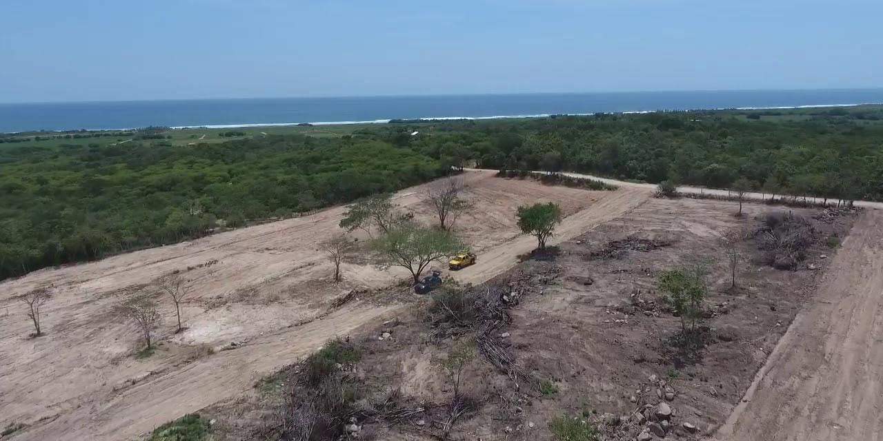 Acusan a Chucho Reyes de vender terrenos en Zipolite | El Imparcial de Oaxaca