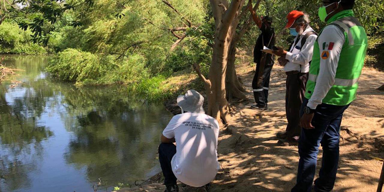 Sigue la búsqueda de cocodrilos en el Río Espíritu Santo | El Imparcial de Oaxaca