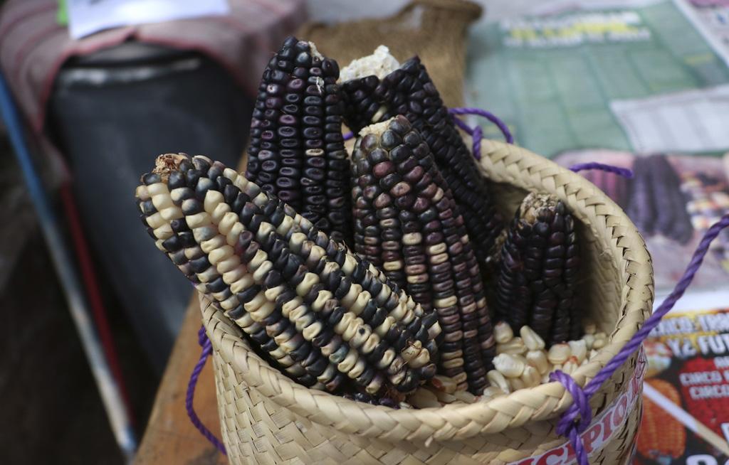 Segalmex vende Maíz que se pudre y a precios altos   El Imparcial de Oaxaca