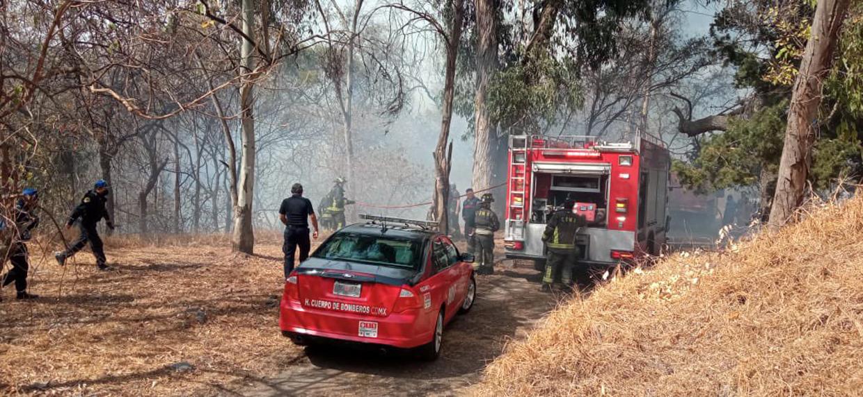 Incendio en tercera sección del Bosque de Chapultepec   El Imparcial de Oaxaca