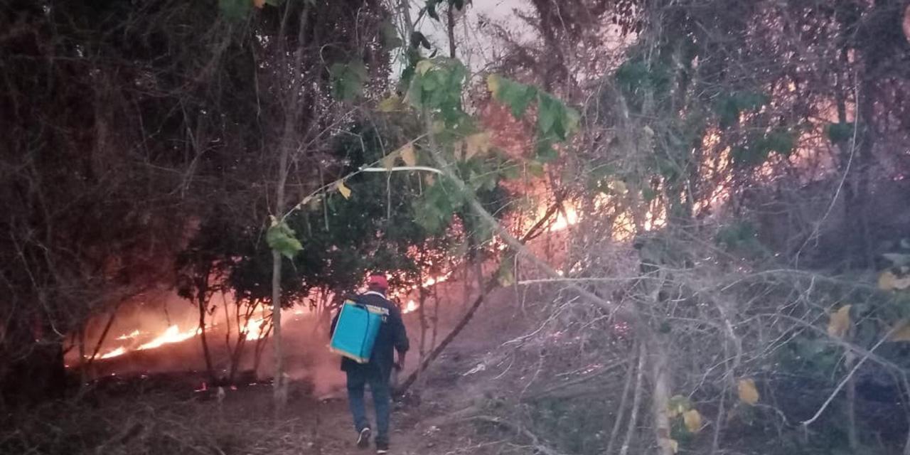 Llamas arrasan con zona conurbada de Pinotepa | El Imparcial de Oaxaca