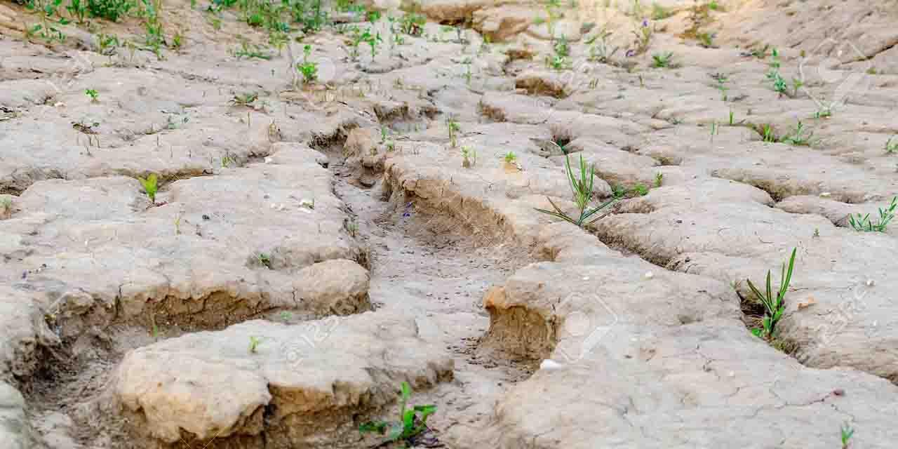 85% del país sufre por falta de lluvias | El Imparcial de Oaxaca