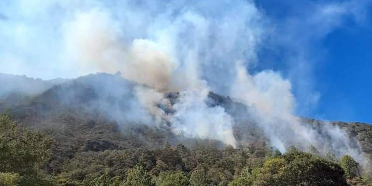 Siniestradas más de 18 mil  hectáreas por incendios en Oaxaca | El Imparcial de Oaxaca