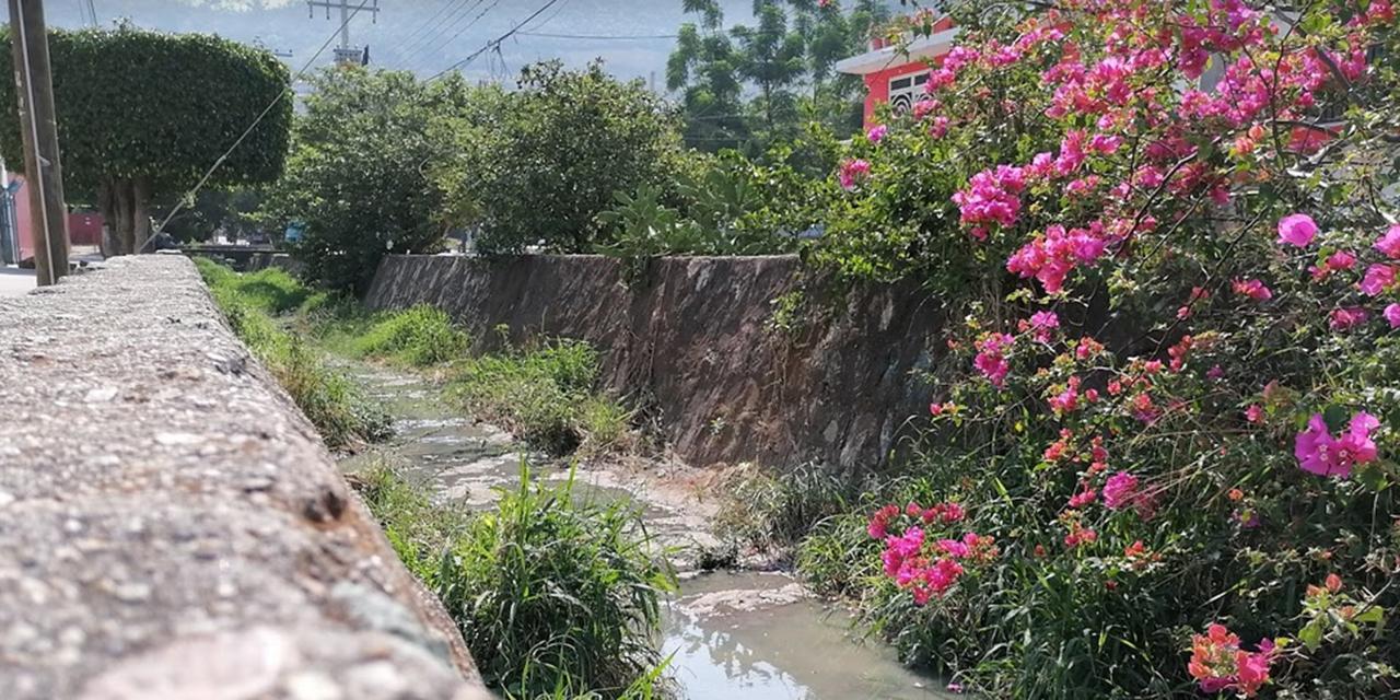 SAPAO atenderá canal a cielo abierto en Ex Marquesado | El Imparcial de Oaxaca