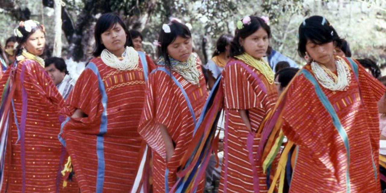Ombudsman pide resarcir deuda con indígenas y afromexicanos   El Imparcial de Oaxaca