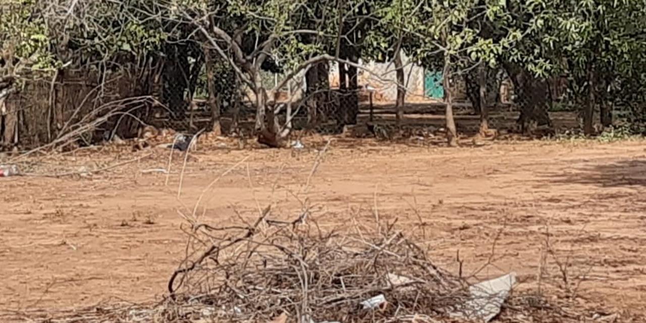 Lo sorprende la muerte en un terreno baldío de Tehuantepec   El Imparcial de Oaxaca