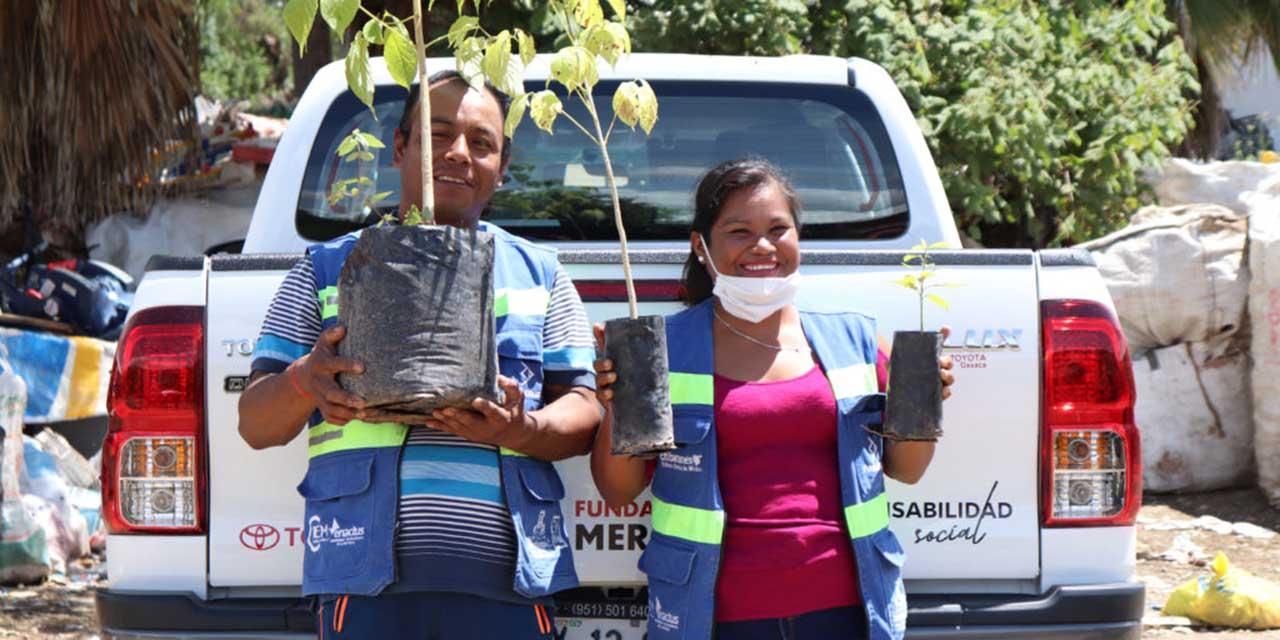 Recicladores de Huajuapan harán 'Trueque ecológico' | El Imparcial de Oaxaca