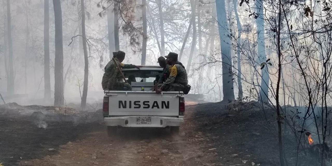 Apagan incendio en el Polvorín | El Imparcial de Oaxaca