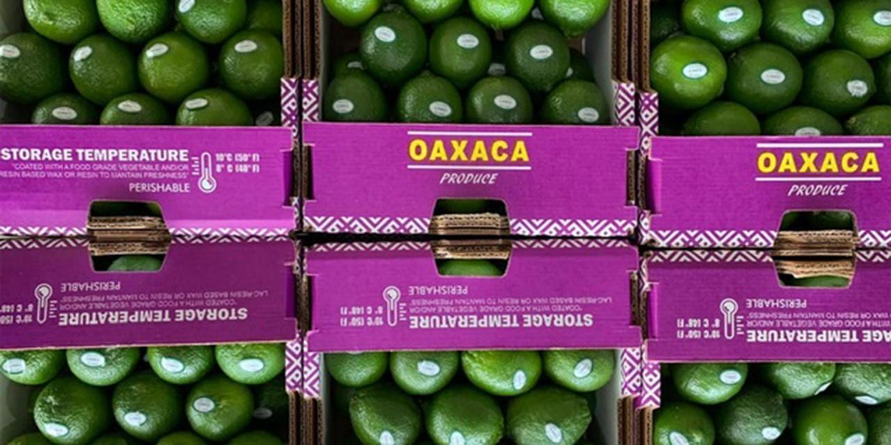 Oaxaca se consolida como productor agroalimentario | El Imparcial de Oaxaca