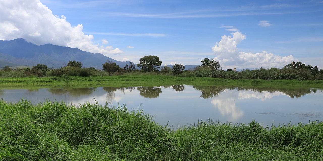 Deficiente operación de planta de aguas negras de Nazareno, Etla   El Imparcial de Oaxaca
