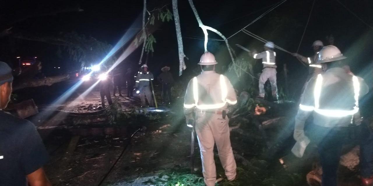Árbol bloquea carretera Cacahuatepec-Pinotepa | El Imparcial de Oaxaca