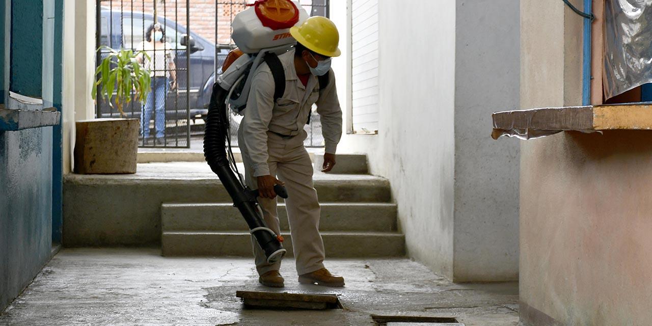 Suman 8 casos de dengue en Oaxaca; reactivan la prevención | El Imparcial de Oaxaca