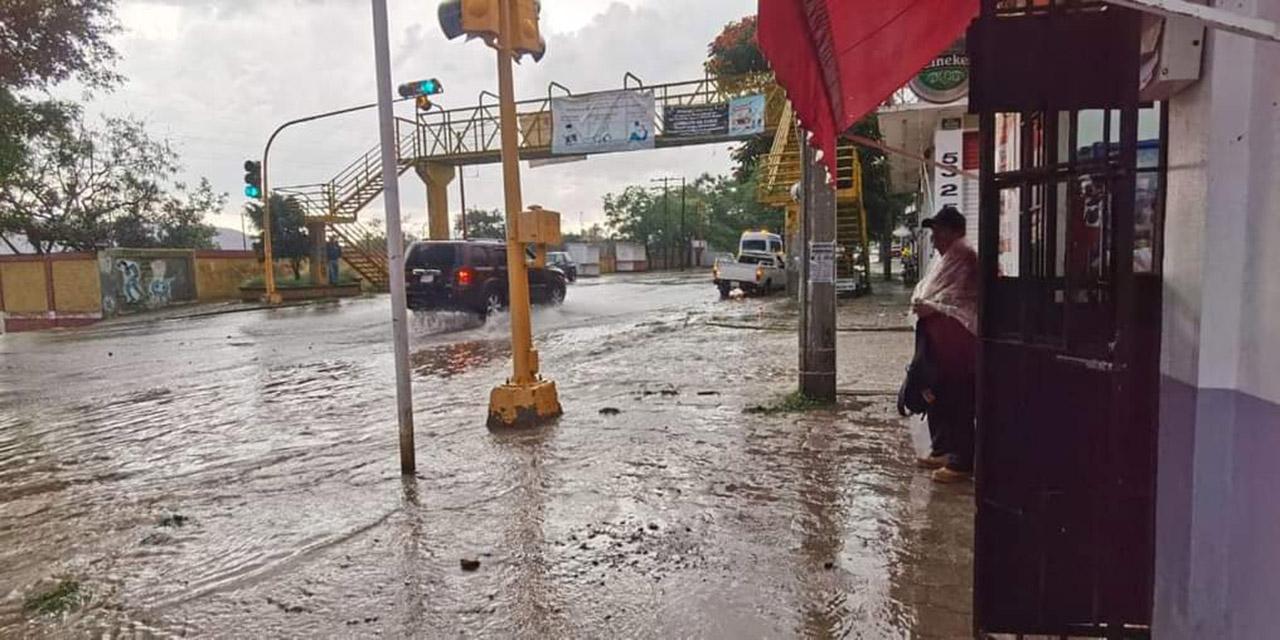 CEPCO exhorta a evitar protegerse de lluvia debajo de los árboles   El Imparcial de Oaxaca