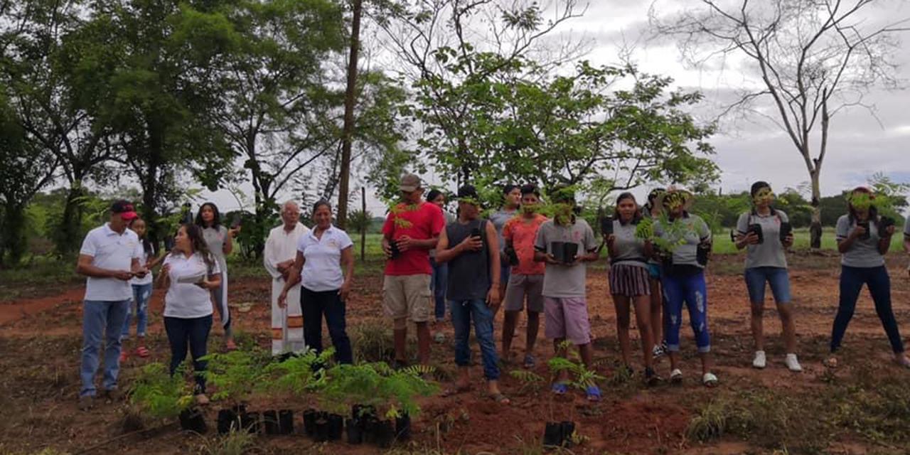 Sembrarán más de mil árboles en Lo de Soto, en la Costa oaxaqueña | El Imparcial de Oaxaca