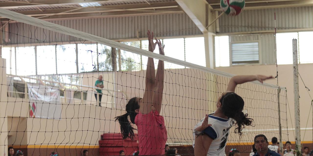 Fisioterapeutas anuncian  torneos de voleibol y babyfut   El Imparcial de Oaxaca