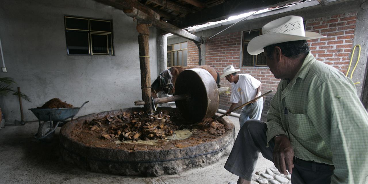 Con todo y Covid, crece 71% superávit comercial en Oaxaca | El Imparcial de Oaxaca