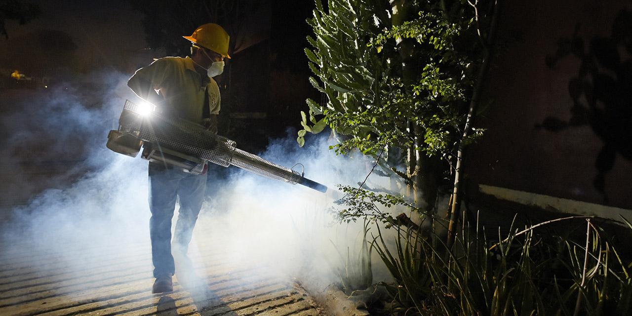 Reportan 42 casos de dengue; 12 en la semana | El Imparcial de Oaxaca