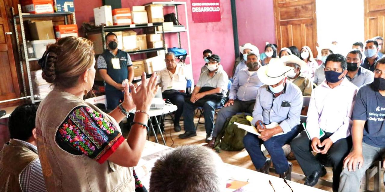 "Programa ""Sembrando Vida"" llega a la Cañada   El Imparcial de Oaxaca"