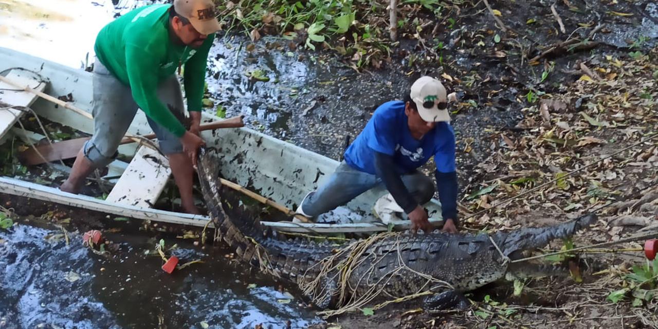 Gobierno estatal brinda apoyo a turistas atacadas por cocodrilo   El Imparcial de Oaxaca