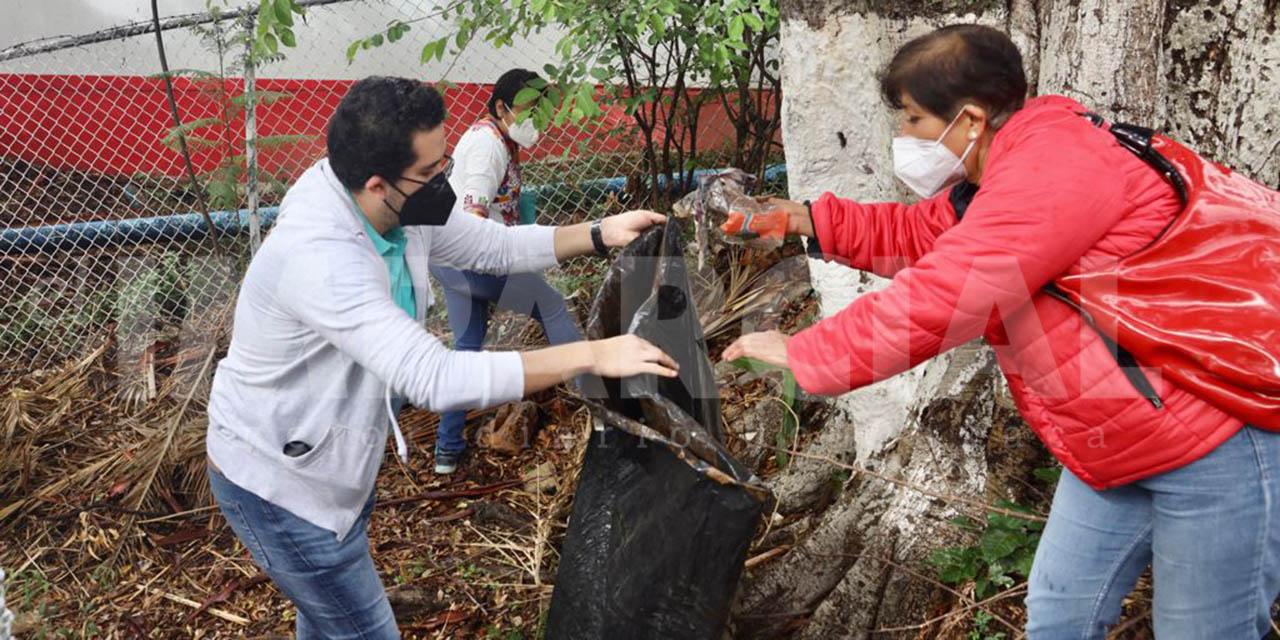 Conmemoran con limpieza en escaleras del Fortín el Día Internacional del Medio Ambiente